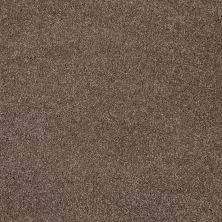 Shaw Floors SFA Awesome 4 Rustic Taupe 00706_E0741
