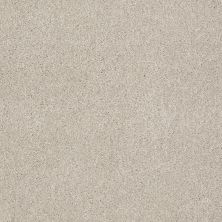 Shaw Floors SFA Awesome 5 (s) Linen 00104_E0743