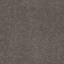Shaw Floors SFA Awesome 5 (s) Stone Hearth 00703_E0743