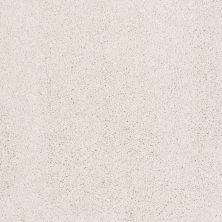 Shaw Floors SFA Awesome 5 (t) Natural Cotton 00110_E0744