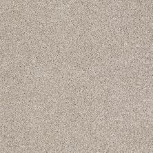Shaw Floors SFA Awesome 5 (t) Doeskin 00112_E0744