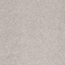 Shaw Floors SFA Awesome 5 (t) Catnip 00114_E0744