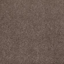 Shaw Floors SFA Awesome 6 (s) Rustic Taupe 00706_E0745