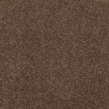 Shaw Floors SFA Awesome 6 (s) Sedona 00708_E0745
