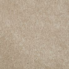 Shaw Floors Value Collections Xv540 Net Cameo 00106_E0756