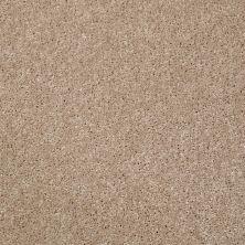 Shaw Floors Value Collections Xv540 Net Desert Trail 00107_E0756