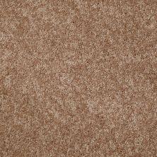 Shaw Floors Value Collections Xv540 Net Caramel Latte 00201_E0756