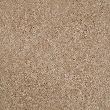 Shaw Floors Value Collections Xv540 Net Blond Oak 00202_E0756