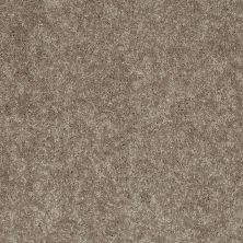 Shaw Floors Value Collections Xv540 Net Olive Grove 00320_E0756