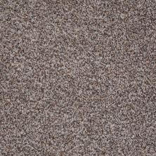 Shaw Floors Lauth With Me (b) Net Bird House 00731_E0777