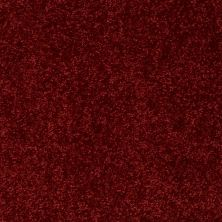 Shaw Floors Value Collections All Star Weekend I 12 Net Red Wine 00801_E0792