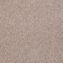 Shaw Floors Value Collections Footwork Net Parchment 00104_E0795