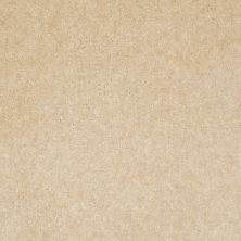 Shaw Floors Value Collections Footwork Net Tea Stain 00109_E0795
