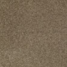 Shaw Floors Value Collections Footwork Net Driftwood 00541_E0795