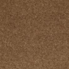 Shaw Floors Value Collections Footwork Net Cork 00732_E0795