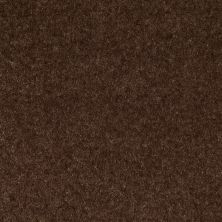 Shaw Floors Value Collections Footwork Net Hot Chocolate 00733_E0795