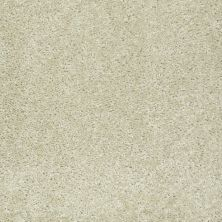 Shaw Floors Value Collections Play Hard Net Balsa 00136_E0797