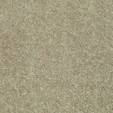 Shaw Floors Value Collections Play Hard Net Taupe Stone 00700_E0797