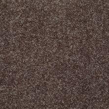 Shaw Floors Value Collections Play Hard Net Sweet Chocolate 00733_E0797