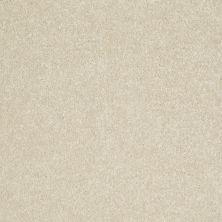 Shaw Floors Value Collections Secret Escape I Net Dove Wing 00100_E0803