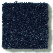 Shaw Floors Value Collections Secret Escape I Net Blue Macaw 00401_E0803