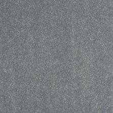 Shaw Floors Value Collections Secret Escape I Net Silver Dollar 00500_E0803