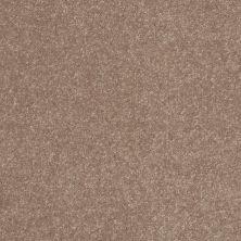 Shaw Floors Value Collections Secret Escape I Net Outer Banks 00708_E0803