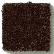 Shaw Floors Value Collections Secret Escape I Net Raisin 00709_E0803