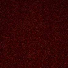 Shaw Floors Value Collections Secret Escape I Net Apache Red 00800_E0803