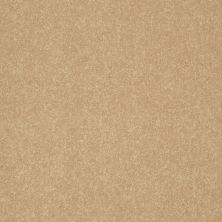 Shaw Floors Value Collections Secret Escape II Net Mustard Seed 00203_E0804
