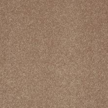 Shaw Floors Value Collections Secret Escape III Net Antique Parchment 00102_E0805