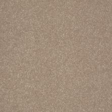 Shaw Floors Value Collections Secret Escape III Net Crisp Khaki 00103_E0805