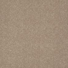 Shaw Floors Value Collections Secret Escape III Net Oatmeal 00104_E0805