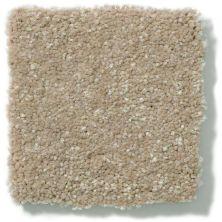 Shaw Floors Value Collections Secret Escape III Net Wheat Bread 00702_E0805