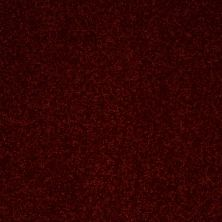 Shaw Floors Value Collections Secret Escape III Net Apache Red 00800_E0805