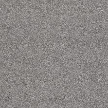 Shaw Floors You Know It Battleship 00513_E0807