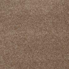 Shaw Floors You Know It Acorn 00700_E0807
