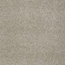 Shaw Floors You Know It Coastal Fog 00702_E0807