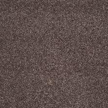 Shaw Floors You Know It Fudge Ripple 00717_E0807