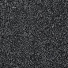 Shaw Floors Parlay Mediterranean 00351_E0811