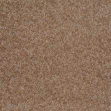 Shaw Floors Parlay Ridgecrest 00702_E0811