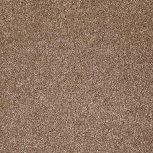 Shaw Floors That's Right Acorn 00700_E0812