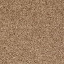 Shaw Floors Value Collections All Star Weekend II 12′ Net Golden Echoes 00202_E0814