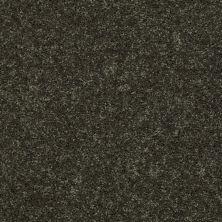 Shaw Floors Value Collections All Star Weekend II 12′ Net Garden Grove 00301_E0814