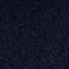 Shaw Floors Value Collections All Star Weekend II 12′ Net Evening Sky 00403_E0814