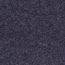 Shaw Floors Value Collections All Star Weekend II 12′ Net Denim 00410_E0814