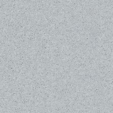 Shaw Floors Value Collections All Star Weekend II 12′ Net Dove 00540_E0814