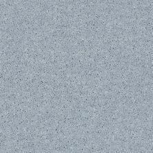 Shaw Floors Value Collections All Star Weekend II 12′ Net Silver Spoon 00542_E0814