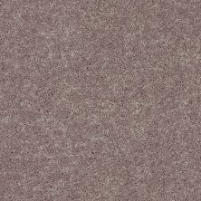 Shaw Floors Value Collections All Star Weekend II 12′ Net Hearth Stone 00700_E0814