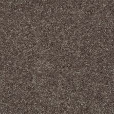 Shaw Floors Value Collections All Star Weekend II 12′ Net Driftwood 00703_E0814